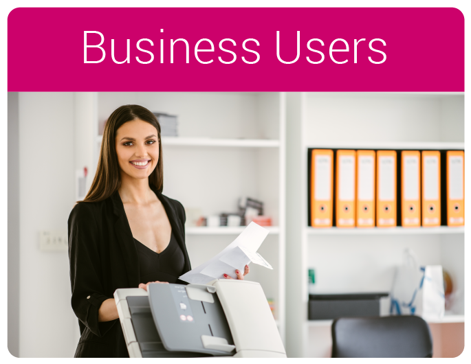 Business Users